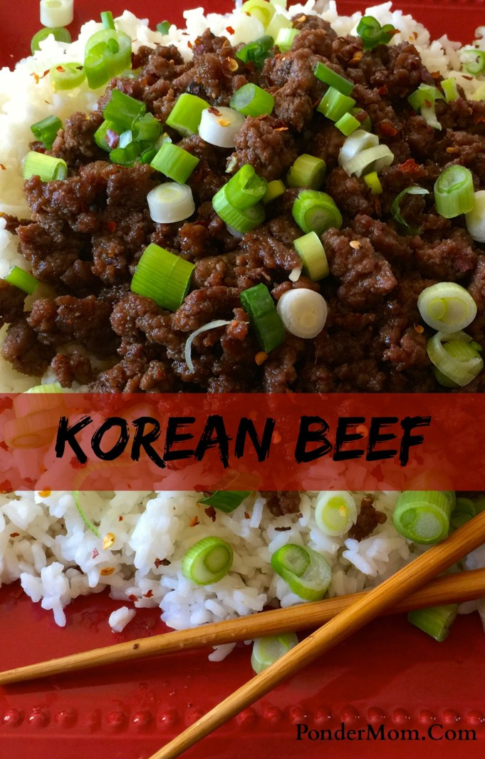 Korean beef with rice: and the dish is done!