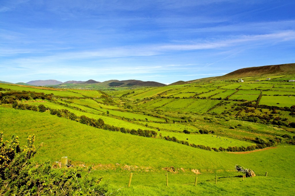 15 reasons to celebrate the color green on Saint Patrick's Day: Ireland
