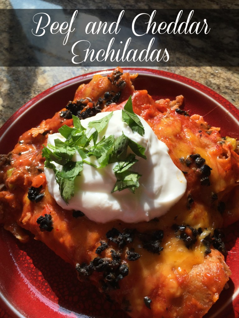 Ground Beef and Cheddar Enchiladas: Mexican goodness on a plate