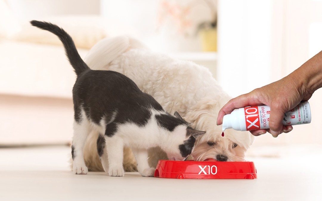 Pond Naturals launches X10: Algae oil for Pets