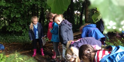 Year 2s Bioblitz Session