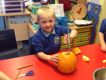 Pumpkin Investigation in Year 2