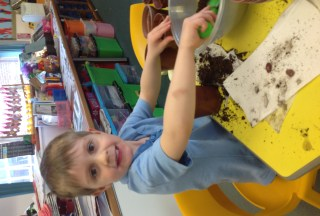 We've 'bean' planting in Reception!