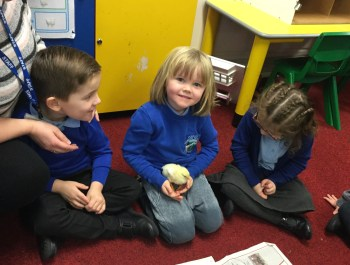 Nursery's Feathered Friends