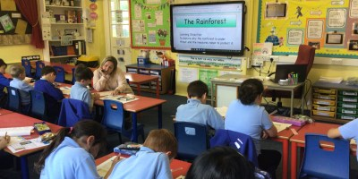 Year 3 Discuss the Effect of Deforestation on the Rainforest