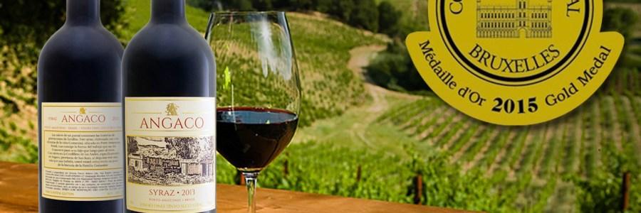 Vinho Angaco – um brinde ao Sucesso
