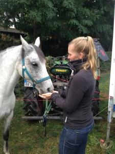 fruehstuecksbroetchen-fuers-pony