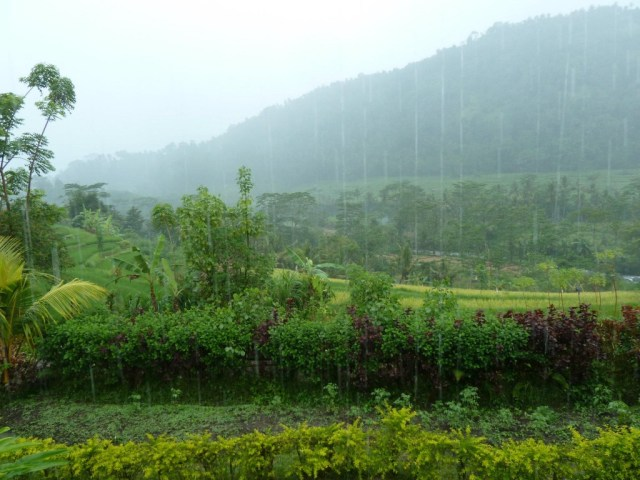 Its More Beautiful in the Rain