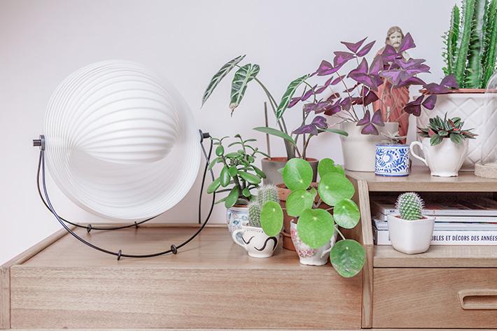 Un coin vert dans le salon et une lampe Eclipse par Mauricio Klabin pour Objekto. #Oxalis #PileaPeperomioïde #Alocasia #cactus