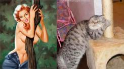 Cats that look like pinups (10)