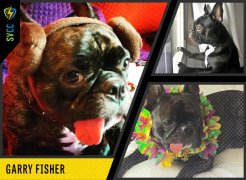 Carrie Fisher's Beloved Dog