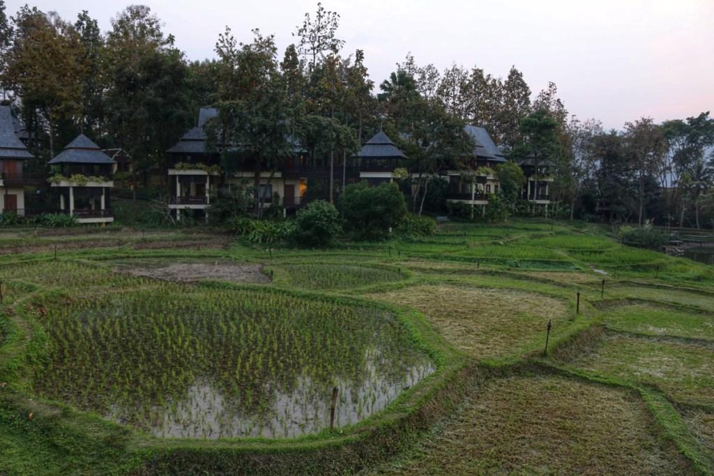 Sala Mae Rim2