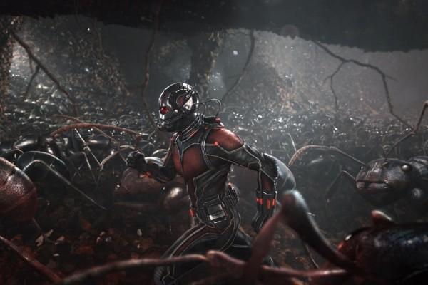 ant-man (4)