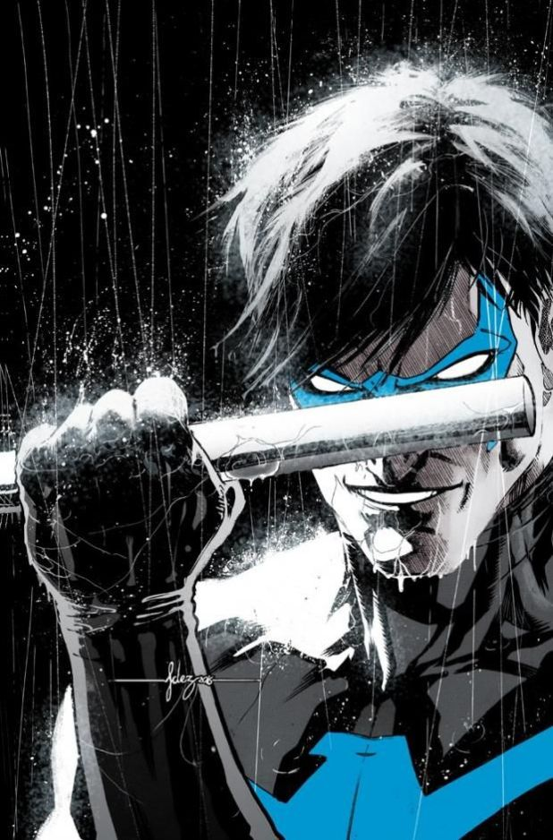 nightwingreborth1