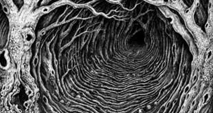 abomnium a hollow path