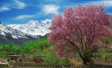 valle dell'Hunza