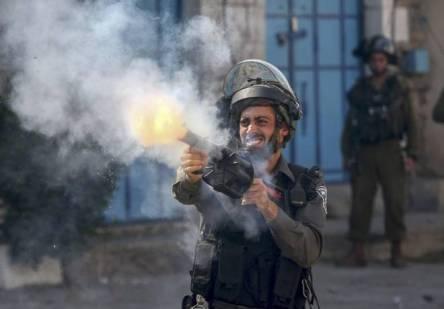 d Palestina proteste 31 ago 2015