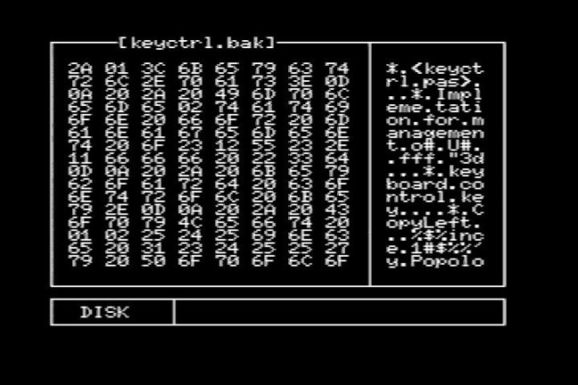 MSXDUMP 0.0 Main screen