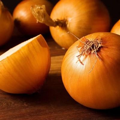Onion Stuttgart