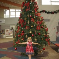 Christmas Tree at the Airport