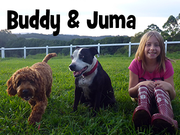 buddy&juma