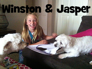 winston&jasper2