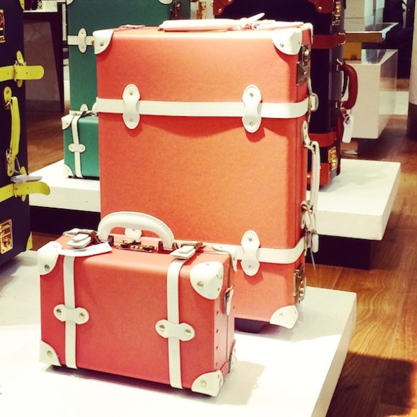 Steamline Luggage - I am in love
