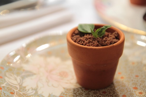 Cheesecake, chcolate soil, basil