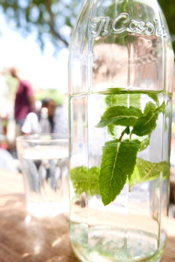 Water with fresh mint