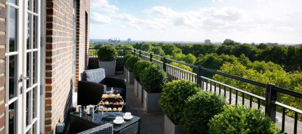 The roof terrace...