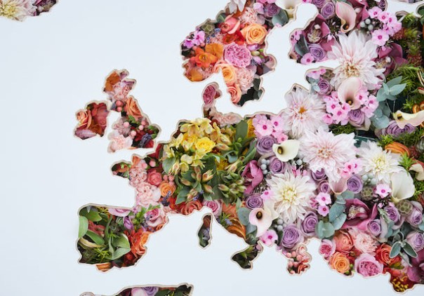 Floral Map by Larry Walshe