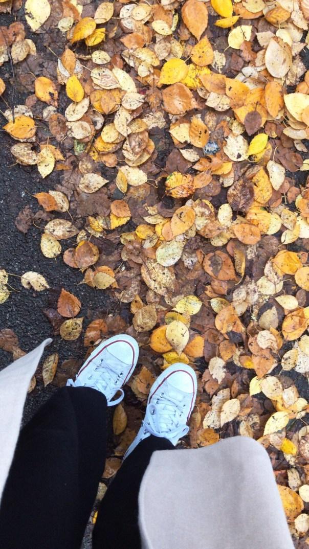 Poppy Loves Autumn