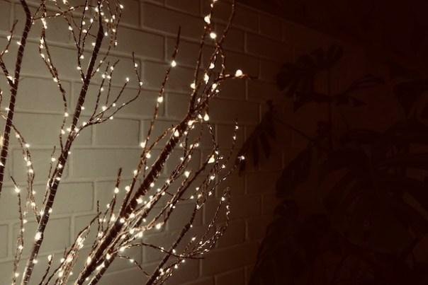 Christmas-Lights-13