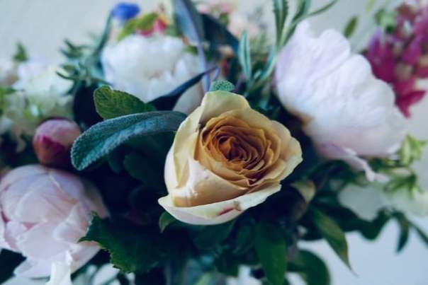 Real-Flowers-Chelsea-2