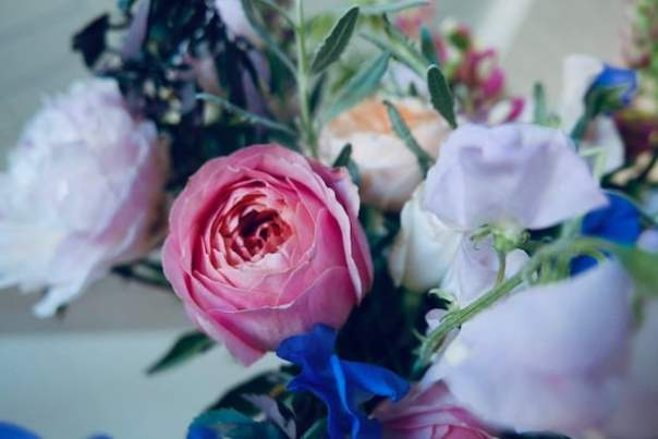 Real-Flowers-Chelsea-6