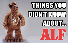 things-alf-feature
