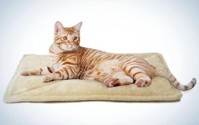 Small, quilted cat bed with a cute cat on it