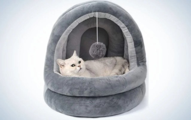 Small dark gray cat bed with a small cat in it