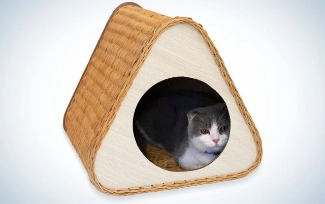 Rattan and natural wood wicker cat bed with a white and gray cat in it
