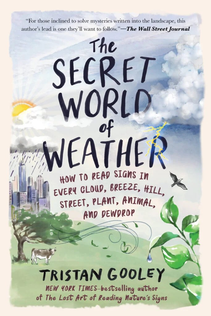 Learn to read clouds, birds, and leaves to predict the weather