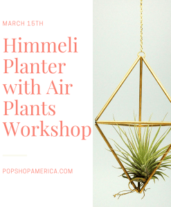 himmeli planter with air plants montrose houston workshop