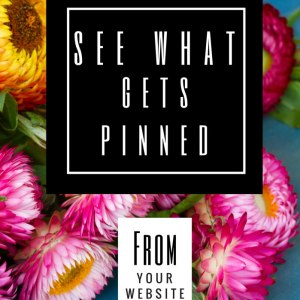 See What's Been Pinned on Pinterest by Others in this easy tutorial