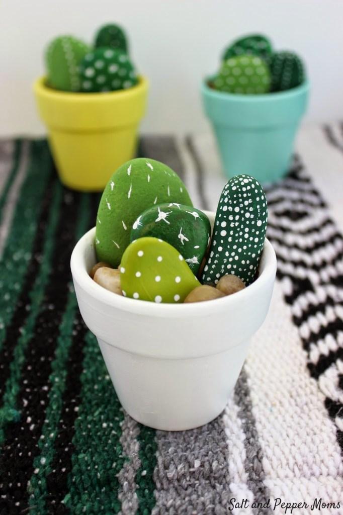 rock cactus garden pop shop america art classes