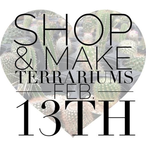 Valentine's terrarium bar feb 13th   Glass Terrariums & Succulent Terrariums
