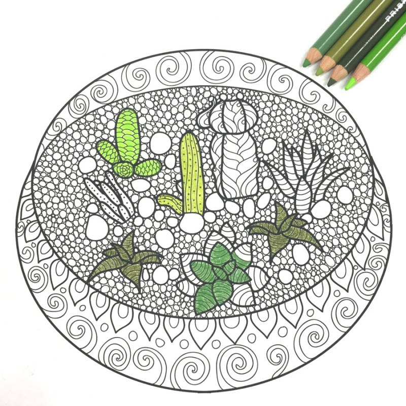 Partially Colored Terrarium Free Printable Adult Coloring Page