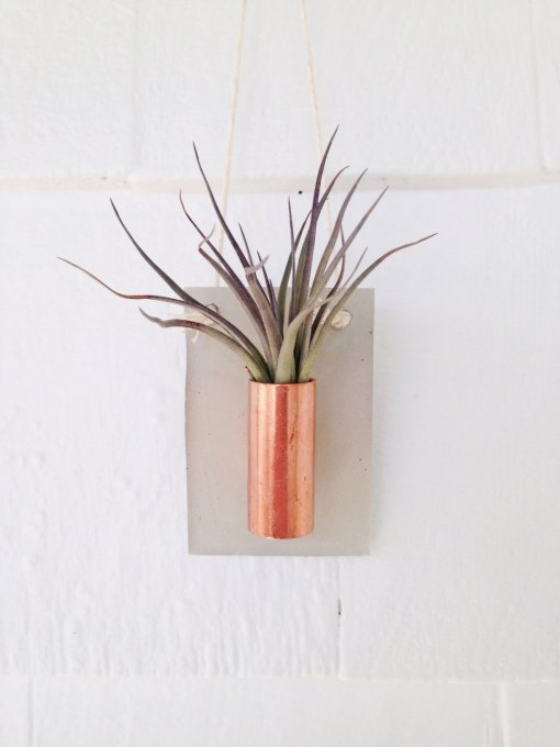copper-and-concrete-wall-hanger-air-plant-vessel