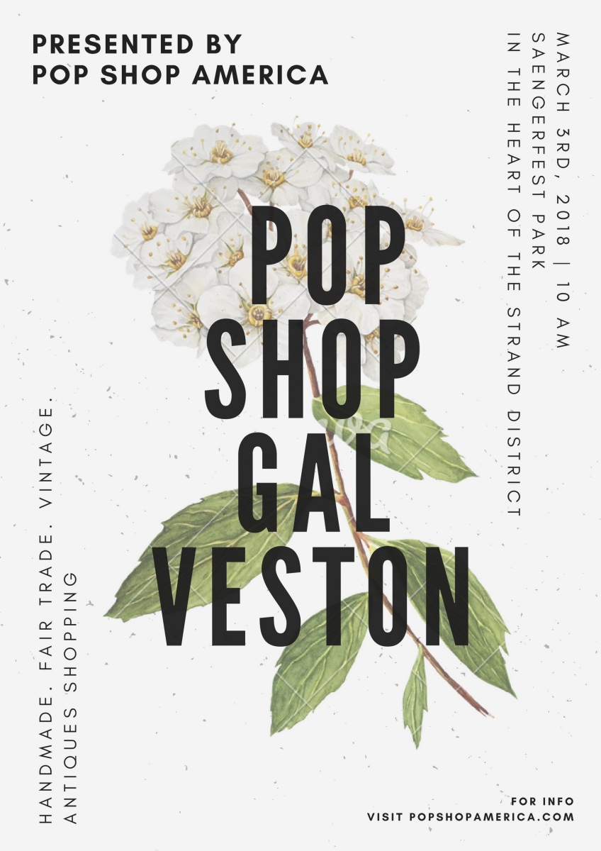 pop shop galveston art market march 2018