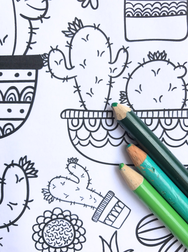 detail of free cactus and succulent adult coloring page printables