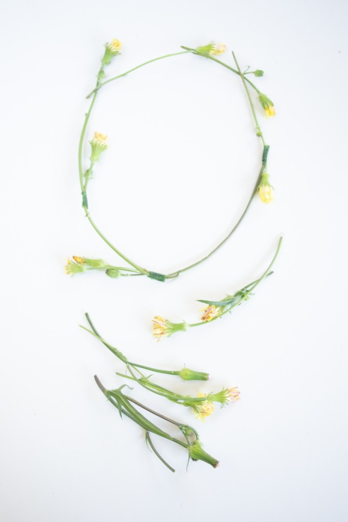 texas-weeds-flower-crown-pop-shop-america