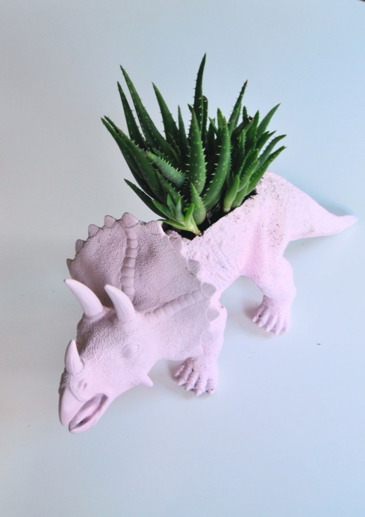 finished featured dino planter diy with succulents pop shop america